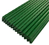 Set of 40 Plastic Coated Metal Garden Plant Support Sticks Stakes...