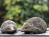 UKMGifts Set of 2 Hedgehog resin garden or indoor ornamen