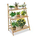 Plant Ladder Stand, Indoor Outdoor Garden Ladder Display Shelf, 3...