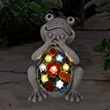 Goodeco Solar Garden statue Frog Ornament with succulent and 7...