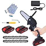 Mini Electric Chainsaw with 2 Battery and 2 Chain Saw, 4-Inch...