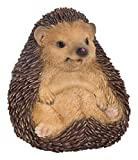 Vivid Arts Sitting Hedgehog Garden Ornament (XRL-HH15-F)
