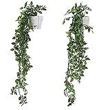 Danisch Set of 2 Hanging Artificial Plants Vines Plants Plastic...