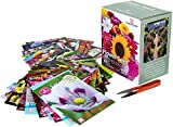 Flower Seed Box Bumper Pack Includes 40 Different Varieties...