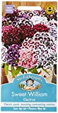 Mr Fothergill?s Seeds Ltd 20756 Flower Seeds, Sweet William...
