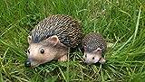 Homezone 2pc Mother & Baby Hedgehog Resin Garden Fairy Ornaments...