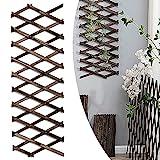 Expandable Garden Trellis, Decorative Wooden Trellis Fence Plant...