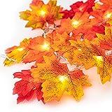 Ventvinal Maple Leaf Fairy Lights, 20 LED Autumn Maple Leaf...