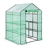 DAWOO Greenhouse 143cmx 143cm x 193cm,Walk In Outdoor Plant...