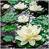 Fake Lily Pads , 9 PCS Artificial Lotus , Realistic Water...