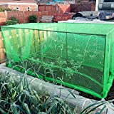 Fruit and Vegetable Protective Cage Supplied with Green Butterfly...