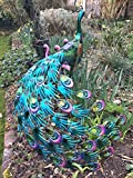 Large Fantail Metal Peacock Garden Ornament - With Solar LED...