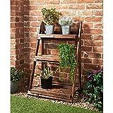 Mason & Jones Burntwood 3 Tier Garden Shelf/Flower & Plant Stand...