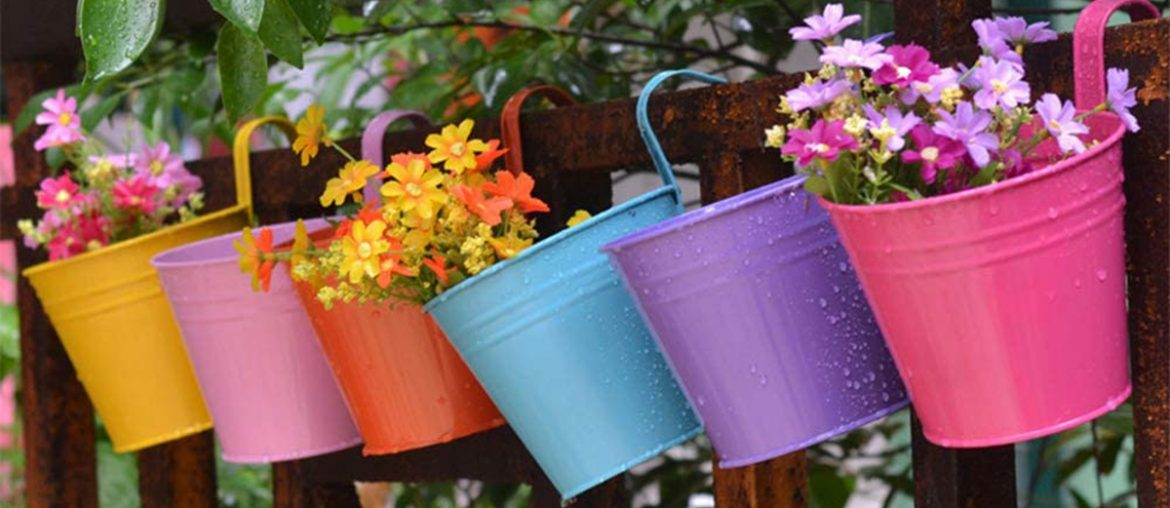 hanging pot for plants